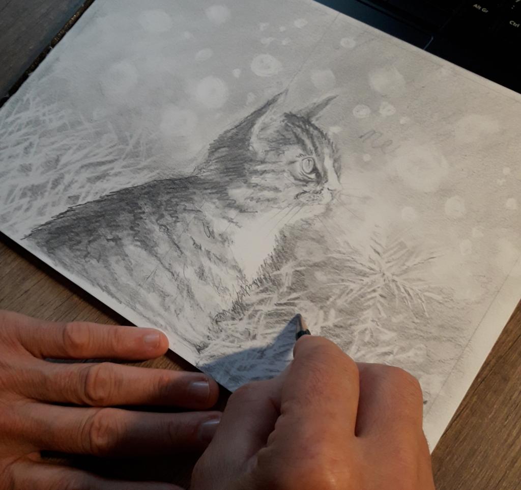 Illustrateur couverture de livre